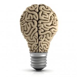 Jak uczy się stary mózg?